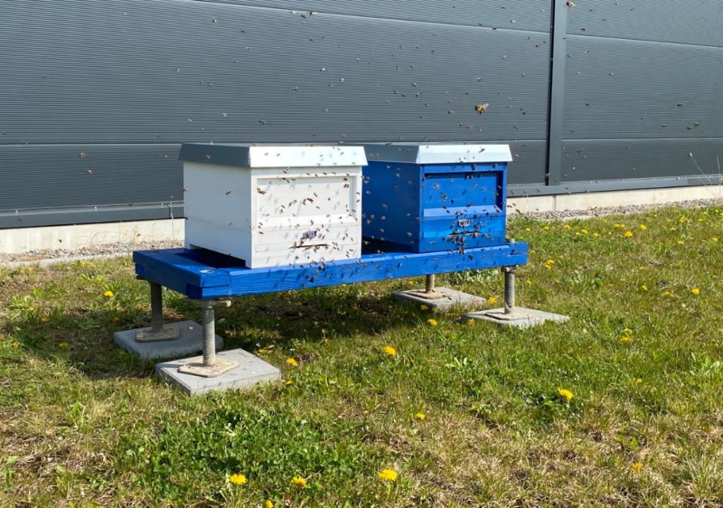 Die Haix Bienenzentrale